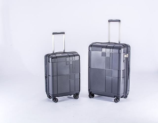suitcases_lugguage_42 moving tips_moving locally or internationally_my life in germany_hkwomanabroad