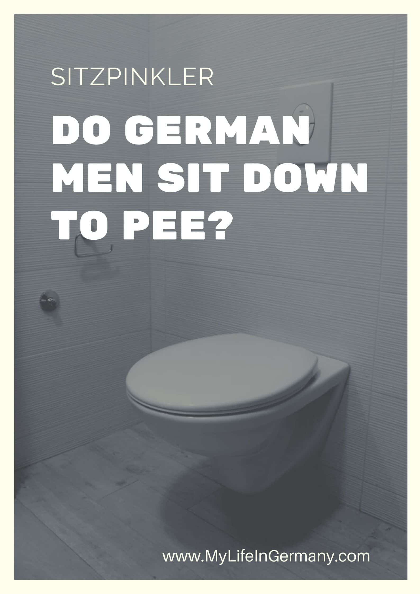 pinterest toilet edited_sitzpinkler_do german men sit down to pee_men sitting to pee_my life in germany_hkwomanabroad-min